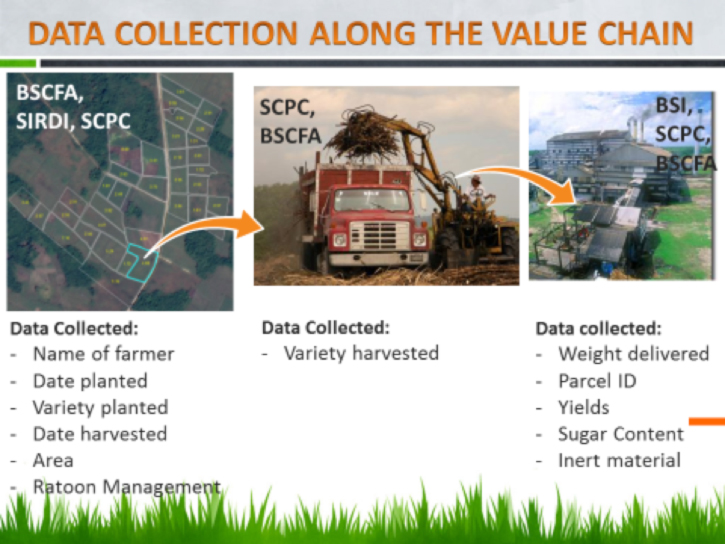 data-collection