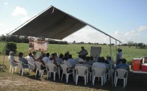 Farmer-Field-School